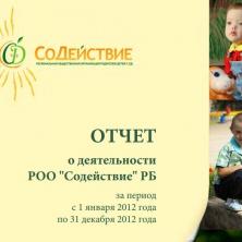 отчет о деятельности 2012