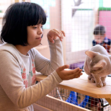Заставка для - Благотворительная акция «Мы вместе». Дети в контактном зоопарке.